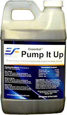 Essential Pump It Up