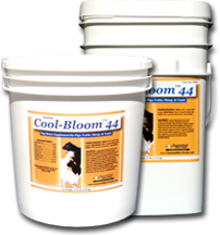 Essential Cool-Bloom™ 44